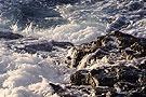 KAPHA - Wasser und Erde (Foto von Alette Borgböhmer)